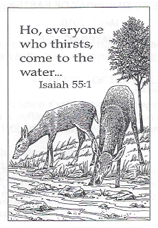 05-02-10-Two-Deer-Drinking-Water-and-quote-from-Isaiah