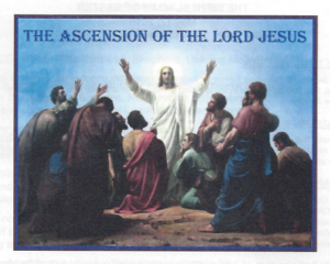 05-17-15-Bulletin-Jesus-ascended-in-front-of-the-Apostles