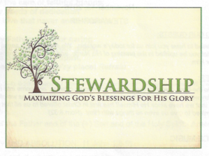 11-13-16-stewardship-a-tree-image-also