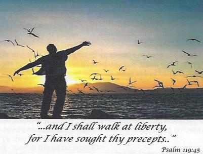 02-10-19-Liberty-License-n-Legalism